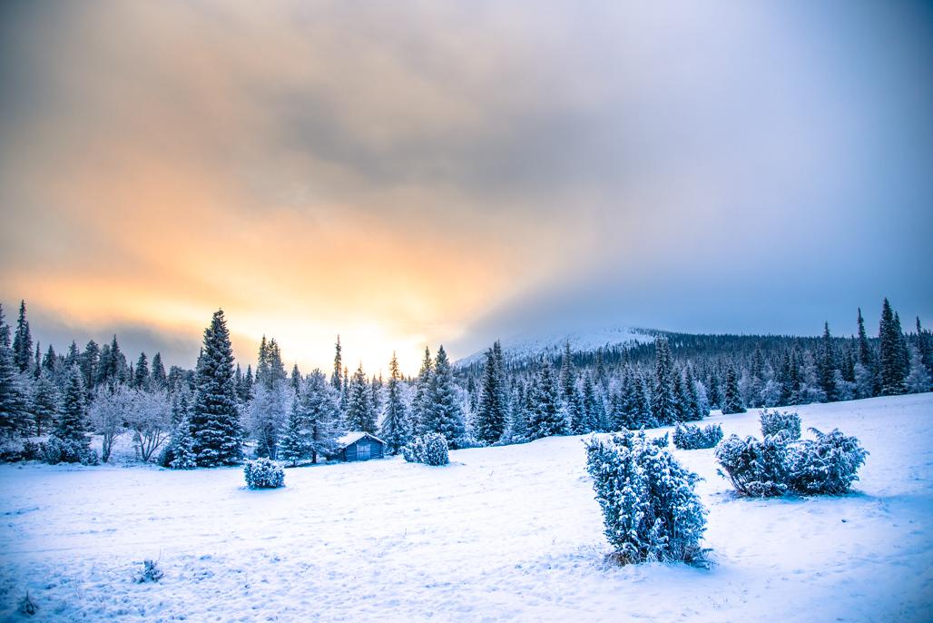 nature christmas things winter finland peaceful wish teach lapland spending happy seasons