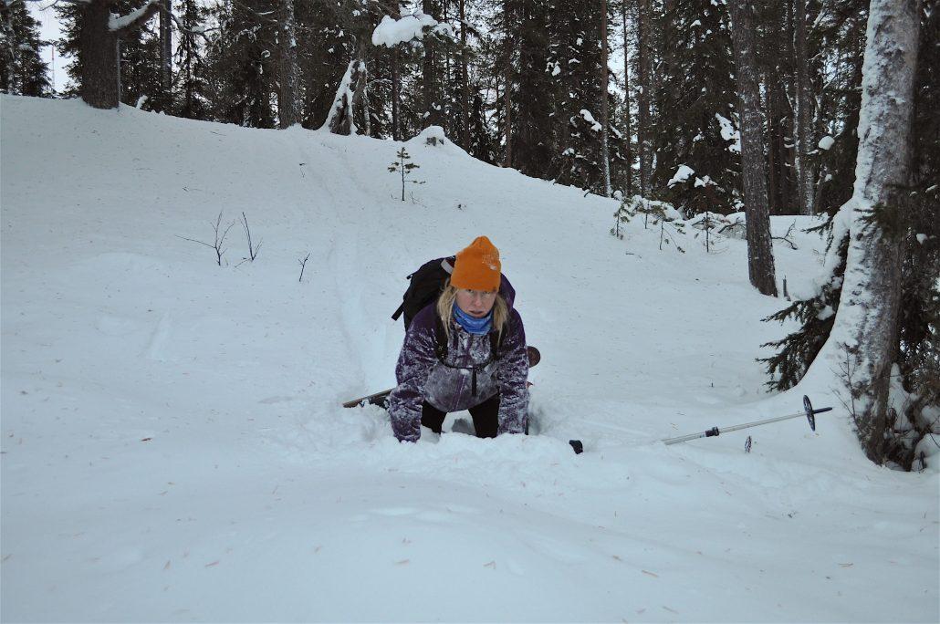 skishoe3