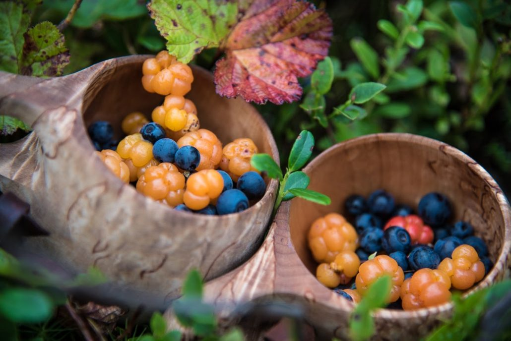 Wild berries of the north are real superfood – FINLAND, NATURALLY
