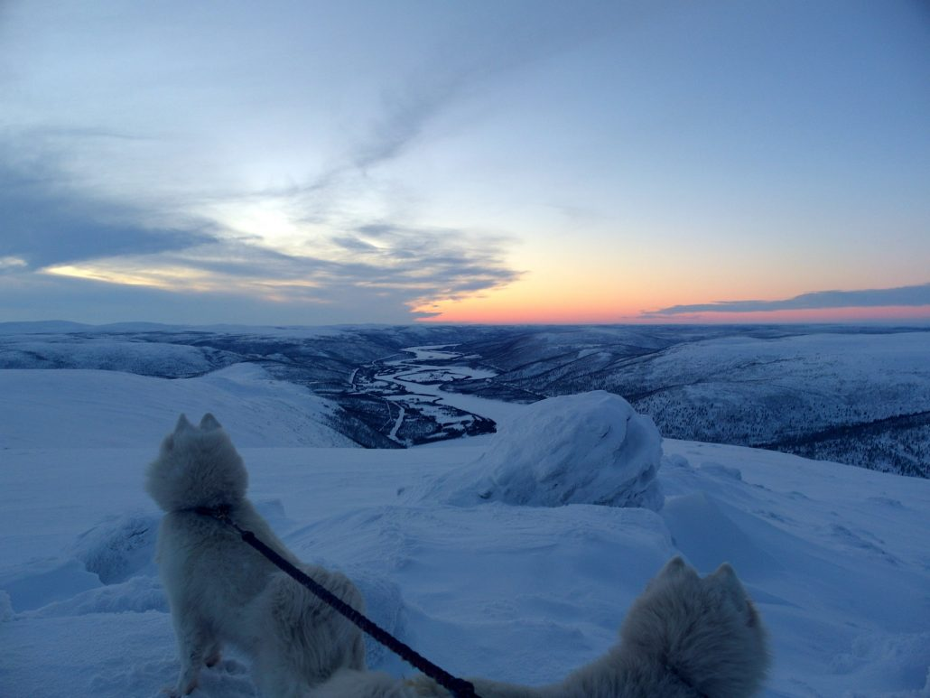 Greetings From Santas Homeland This Is What Winter In Lapland