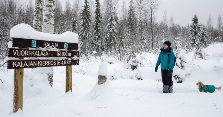 Starting Vuori-Kalaja trail at Southern Konnevesi National Park