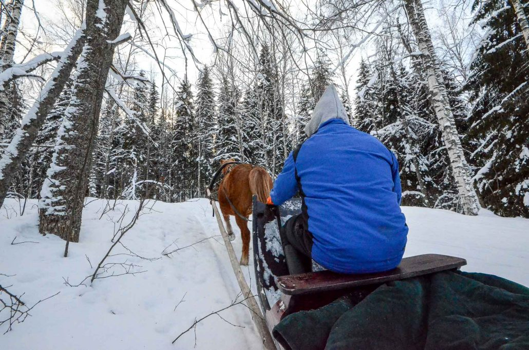 Sleighride at Konttila farm in winter, Puijo, Kuopio, Finland. Photo: Upe Nykänen